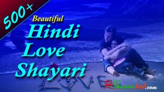 Beautiful Hindi Love Shayari | 500+ Best Love Shayari